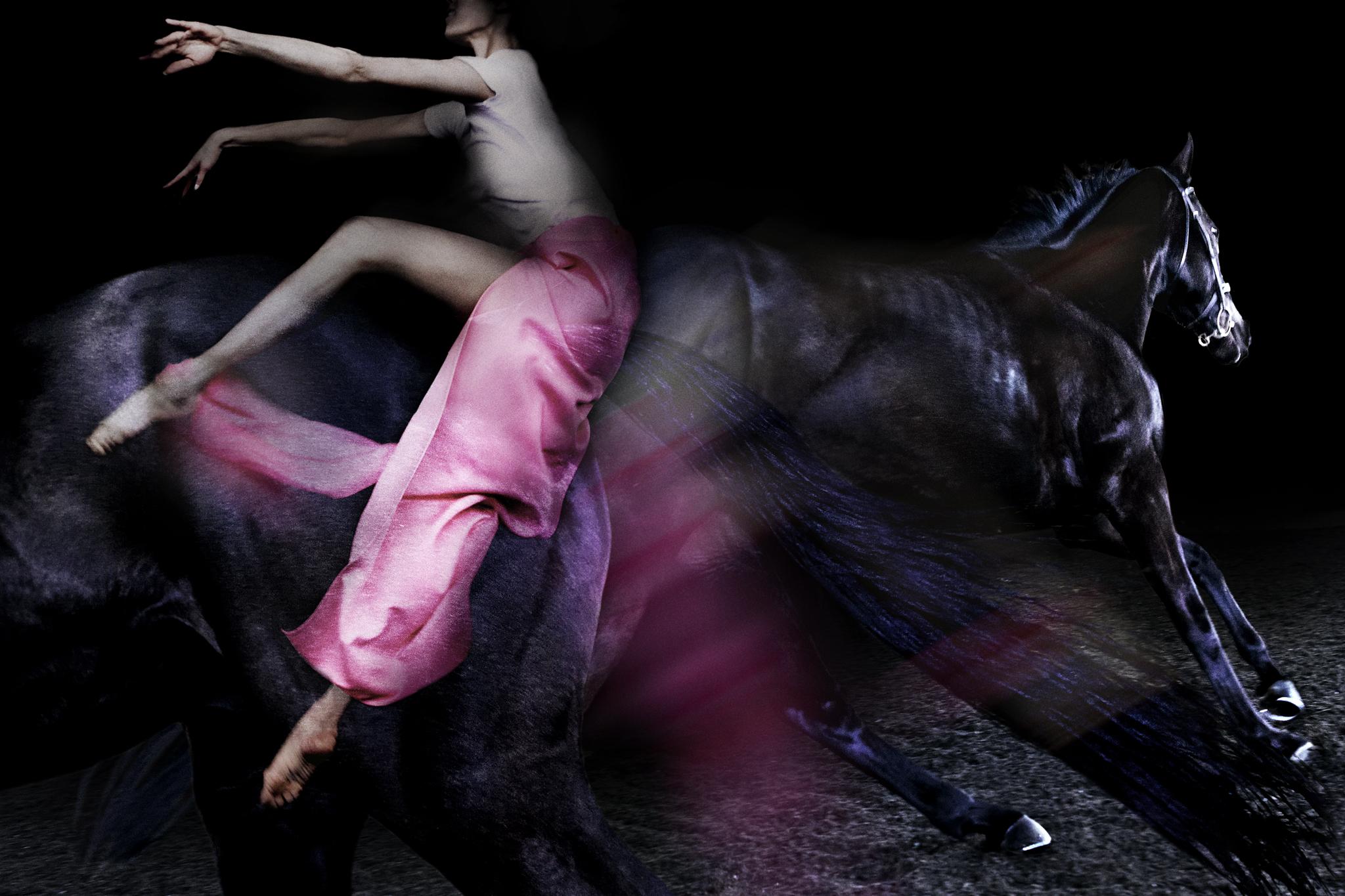 portfolio09_Equus01